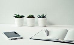 ¿Cómo puedo meter dinero en mi empresa?
